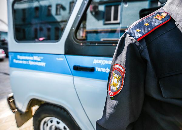ВКраснодаре легковушка насмерть сбила бездомного